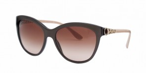 BVLGARI 8158 Brown/Cream