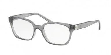 MICHAEL KORS 4049 Grey Transparent